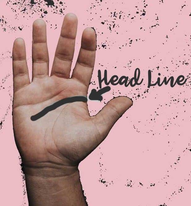 palm reading head line