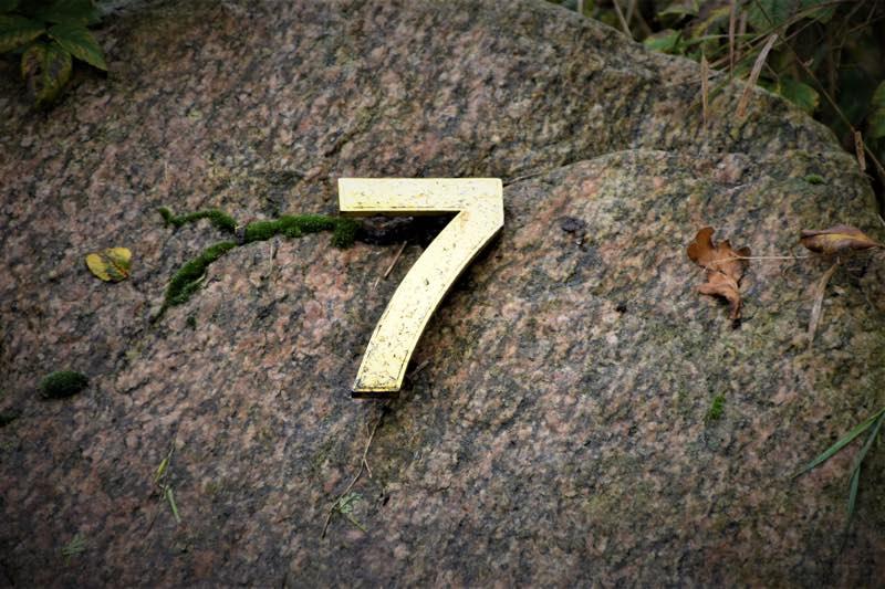 angel number seven